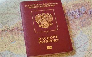Сколько стоит загранпаспорт нового образца в россии в 2020 году — в мфц