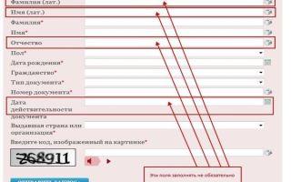 Как проверить запрет на выезд из россии за границу онлайн в 2020 году — фмс, официальный сайт, по инн, бесплатно