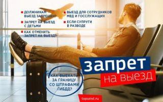 Проверить запрет на выезд за границу в 2020 году — онлайн, у пограничников официальный, из россии, судебные приставы