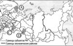 Какое место занимает россия в мире по численности населения в 2020 году — плотность, кризис, демографический