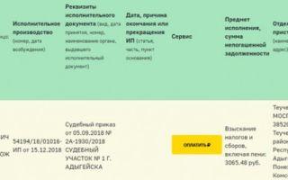 Запрет на выезд за границу в 2020 году — проверить, у пограничников официальный сайт, судебные приставы