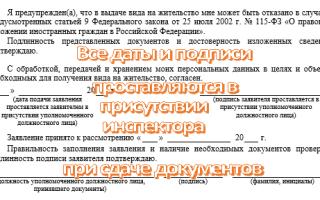 Вид на жительство иностранного гражданина в рф в 2020 году — бланк, кто может получить, документов