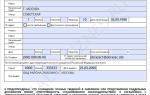 Анкета на загранпаспорт старого образца (заявление) в 2020 году — уфмс скачать бланк, заполнения, на ребенка до 14 лет