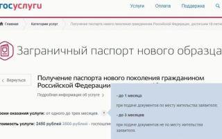 Как сделать загранпаспорт через госуслуги пошаговая инструкция в 2020 году — москва, для ребенка