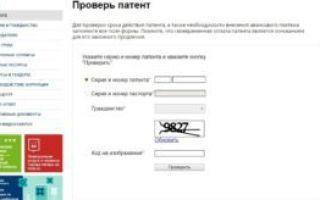 Проверка патента по базе уфмс через официальный сайт в москве в 2020 году — готовности, оплаты