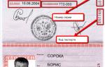 Код вида документа паспорта для налоговой в 2020 году — рф, иностранного гражданина