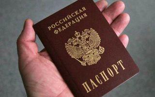 Нужно ли всегда носить с собой паспорт в 2020 году — закон, заменить, получить, предъявлять