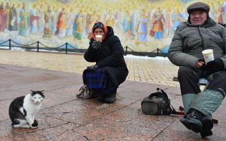 Сколько человек живет в россии в 2020 году — сейчас, за чертой бедности