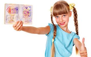 Документы на загранпаспорт старого образца в 2020 году — ребенку до 14 лет, в мфц, срок действия