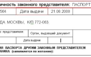 Бланк заявления о выдаче паспорта нового поколения в 2020 году — образец, несовершеннолетнего гражданина, скачать, заполнения