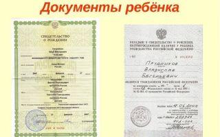 Список документов, удостоверяющих личность гражданина рф в 2020 году — закон, перечень, полный