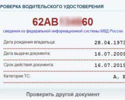 Проверить водительское удостоверение онлайн по базе ГИБДД (права) в 2020 году - фамилии, лишение, на штрафы