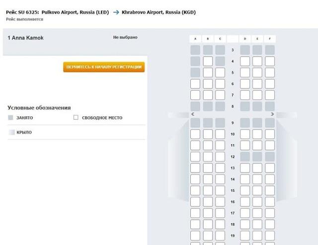 Онлайн-регистрация на рейс Аэрофлота в 2020 году - по номеру билета из Шереметьево, пошаговая инструкция, официальный сайт