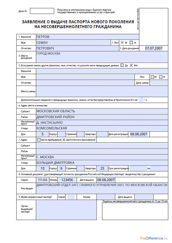 Образец заполнения анкеты на загранпаспорт нового образца в 2020 году - ребенка, трудовой деятельности