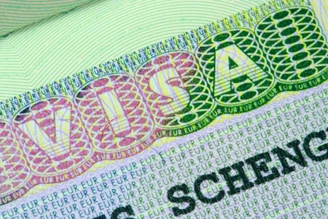 Образец справки с места работы для шенгенской визы в 2020 году - скачать, как выглядит, сколько действует