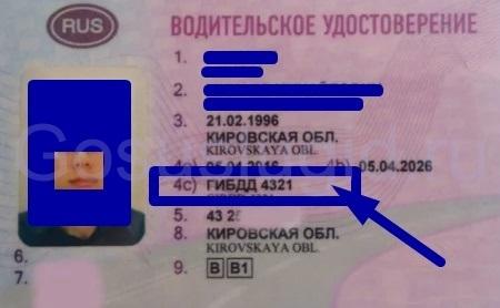 Образец заявления на замену водительского удостоверения в 2020 году - заполнения, скачать, ГИБДД, Госуслуги