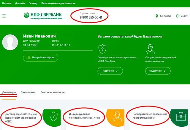 Проверить пенсионные накопления по СНИЛС онлайн в 2020 году - в ПФР, без регистрации, Сбербанк, номеру