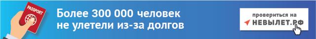 Как проверить запрет на выезд из России за границу онлайн в 2020 году - ФМС, официальный сайт, по ИНН, бесплатно