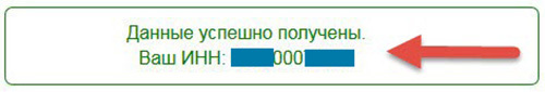 Узнать ИНН по паспорту для физлиц в 2020 году - на сайте Налоговой Службы, онлайн, РФ, без даты рождения