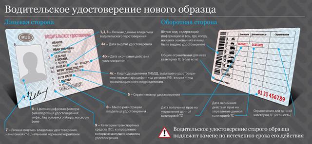 Водительское удостоверение нового образца в 2020 году - расшифровка, фото, скачать, бланк