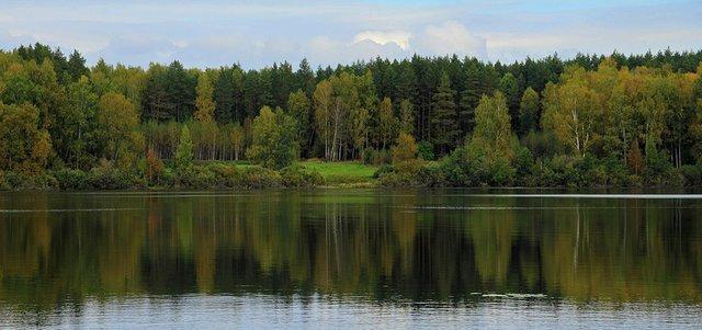 Список самых чистых городов России по экологии в 2020 году - рейтинг